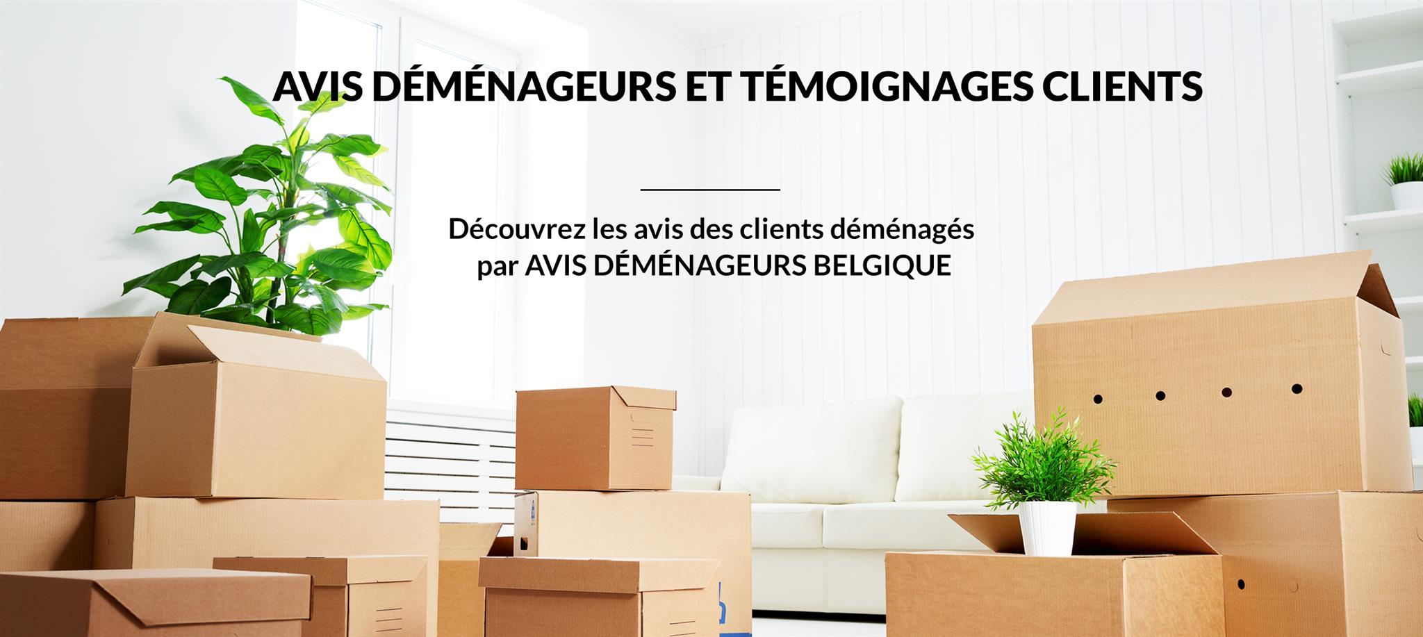 Avis déménageurs belgique